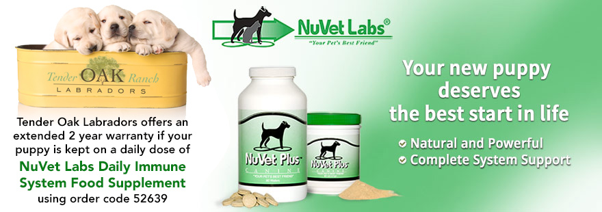 nuvet labs dogs cats vitamins supplements header